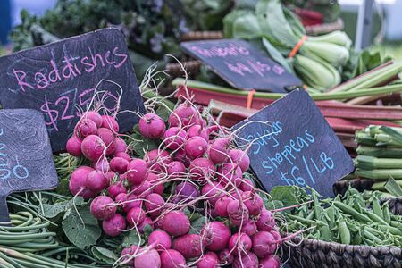 fresh radishes pilled up at a local farmers market Imagens
