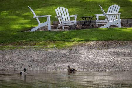 two mallard ducks on a lake next to lawn chairs