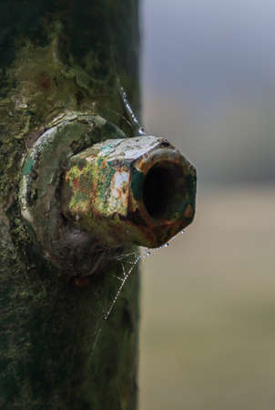 old corroded bolt on a pole covered in webs Zdjęcie Seryjne - 157097676