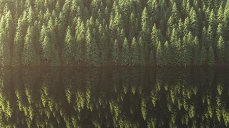Waldsee, Bäume spiegeln sich im Wasser. 3D-Rendering