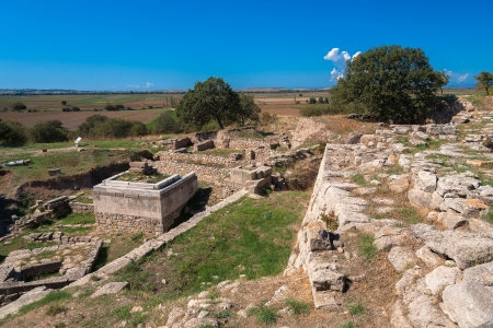 trojan horse: The ruins of the legendary ancient city of Troy  Turkey