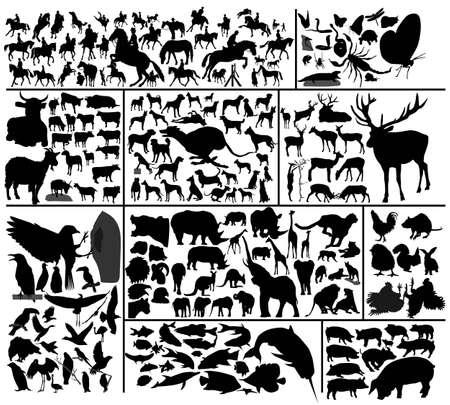 Verzameling van honderd vector silhouetten van verschillende huisdieren en wilde dieren. Om te zien soortgelijke bezoek mijn galerij.