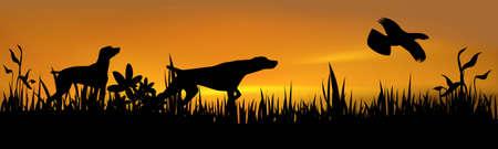 Chiens de chasse avec l'oiseau sur le coucher du soleil Banque d'images - 5210084