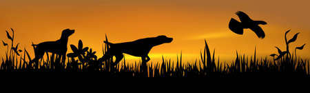 Hunting dogs with bird over sunset