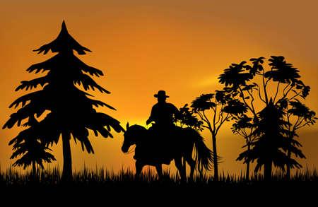 silueta ciclista: Vaquero en un caballo durante la puesta de sol