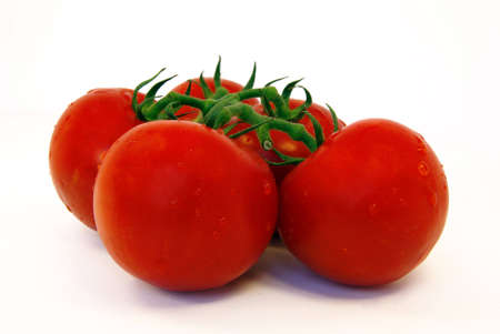 Close-up view of some vine tomatoes over a white background photo