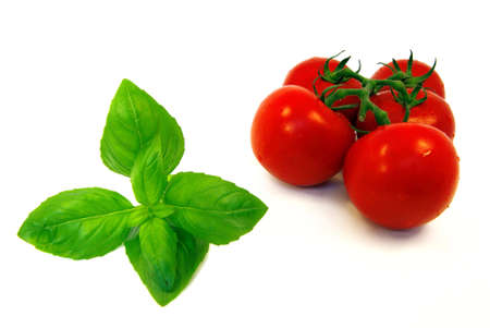 Close-up view on some fresh basil and vine tomatoes. Stock Photo - 3401352