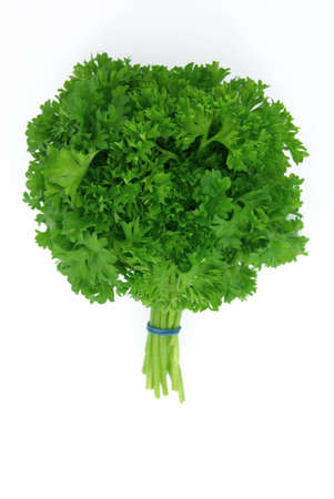 View of a fresh parsley bouquet over white background.