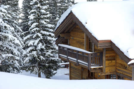 View of a chalet in a forest in winter.