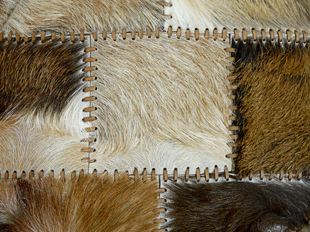 stitched animal skins, decorative background