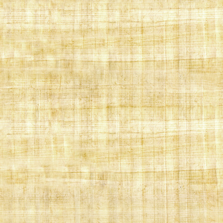 papyrus texture - seamless pattern - ridged surface Stock fotó