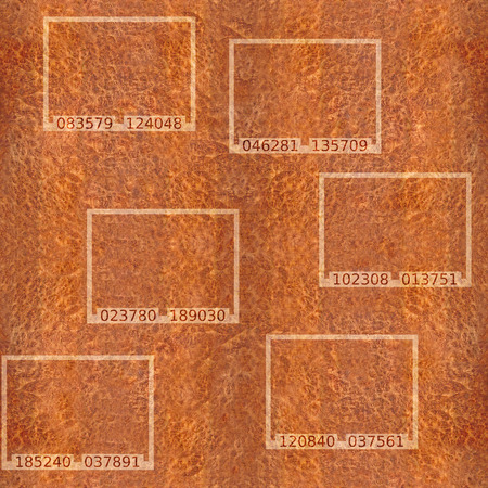 textur: Abstract Carpathian Elm wood textur - seamless background -  code label on background