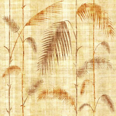 Hojas botánicas tropicales decorativas - fondo de pantalla interior - fondo transparente - textura de papiro