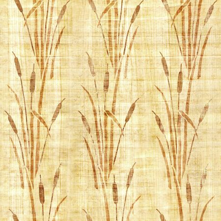 Water Reed Plant - Swamp cane grass - Pattern of the decorative background - Interior wallpaper - papyrus texture - seamless background