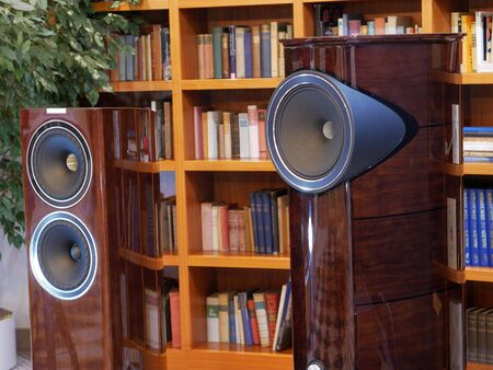 Audiophile HiFi speakers. The listening room in the library.