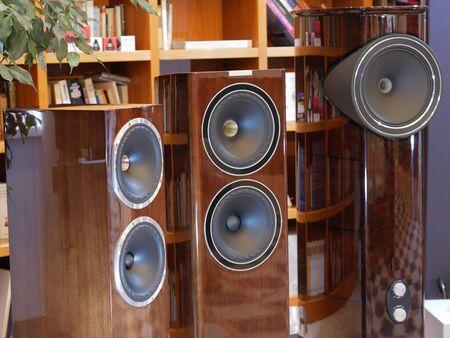 Audiophile HiFi speakers in the listening room. Banco de Imagens