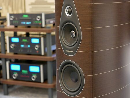 Audiophile speakers and Hi-Fi sound system. Close-up view. Stock Photo