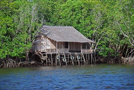 Fishermans house in Indonesian mangrove