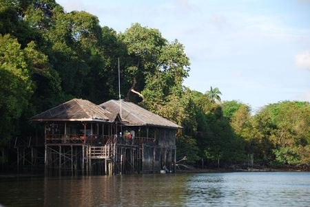 River trip in Indonesian mangrove