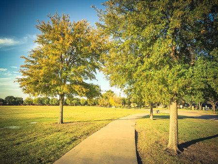 Filtered tone urban park with concrete trail and green grass law