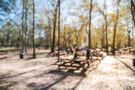 Blurry background  forest campfire and people hangout at wintertime in Texas, USA Stock Photo - 123152459