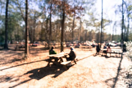 Filtered image blurry  forest campfire and people hangout at wintertime in Texas, USA