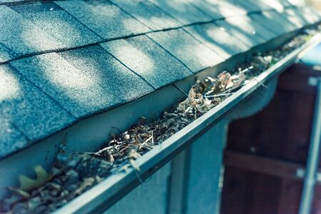 Vintage tone gutter near roof shingles of residential house full of dried leaves and dirty need to clean-up. Gutter cleaning and home maintenance concept Stock Photo