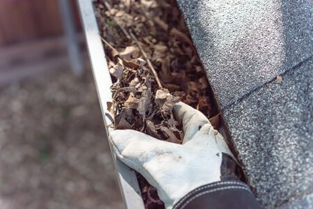 Top view man hand in gloves cleaning house gutter from leaves and dirt. Roof gutter cleaning near shingles roof in summer time Stock Photo