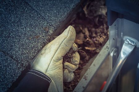 Close-up man hand with gloves on ladder cleaning house gutter from leaves and dirt. Roof gutter cleaning near shingles roof in summer time Stock Photo