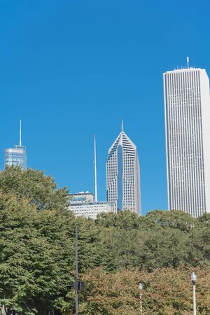 Lookup view of Chicago downtown from the park. Skyline buildings and trees background Standard-Bild - 129318834