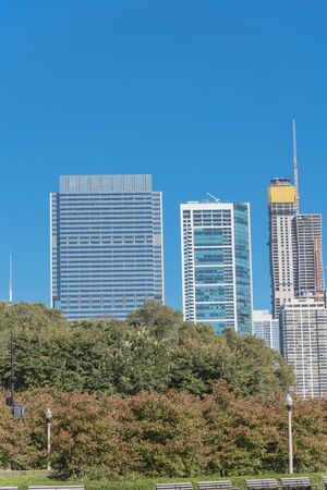 Low angle view of Chicago downtown from the park. Skyline buildings under construction with working crane and trees background Standard-Bild - 129318784