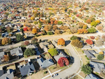 Aerial view residential neighborhood in sunny autumn day with colorful fall foliage. Top of new development subdivision with row of single family house, large backyard and bright orange color leaves