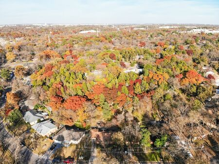 Top view residential houses with beautiful fall foliage in suburb area of Dallas, Texas, US. Aerial one story single family detached dwelling with tree lush canopy backyard, bright autumn orange color