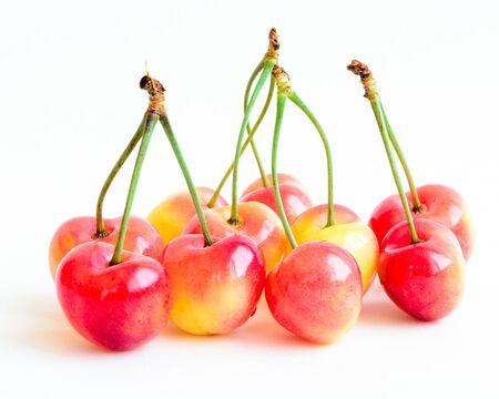 Group of Rainer cherries joined with stem isolated on white background. Fresh picked organic cherries grown in Yakima Valley, Washington State, USA. 스톡 콘텐츠