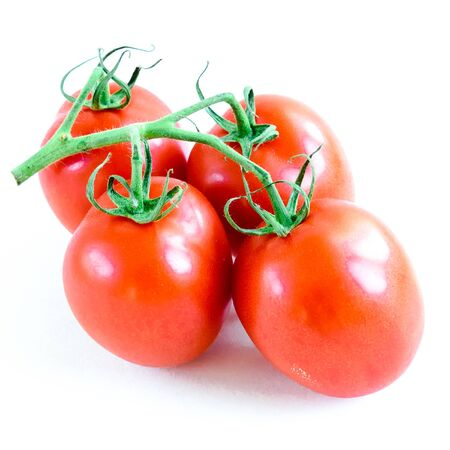 Four on the vine Roma tomatoes isolated on white background. Cluster of vine ripened fruits still attached to the stems. Organic tomatoes with clipping path and copy space