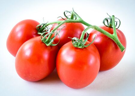 Five on the vine Roma tomatoes isolated on white background. Cluster of vine ripened fruits still attached to the stems. Organic tomatoes with clipping path and copy space