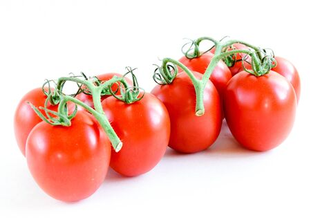 Cluster of vine ripened Roma tomatoes isolated on white background. Organic fruits still attached to the stems. On the vine tomatoes with clipping path and copy space