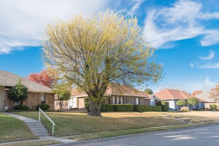 Row of typical bungalow style houses on elevated lots with concrete walkway and handrails. Residential home in middle class neighborhood of Dallas, Texas suburbs with colorful autumn leaves