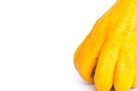 Close-up view Buddha hand fruit or Hand of Buddha, Fingered citron fruit, Citrus medica isolated on white. Afragrant citron variety fruit is segmented into finger-like sections 版權商用圖片