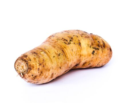 Single Asian sweet potato yam (Ipomoea batatas) isolated on white background. Fresh pick and organic starchy, sweet-tasting, tuberous roots homegrown in Vietnam.