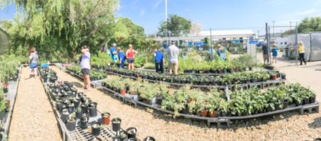 Panorama view abstract blurred customers shopping for wide varieties of yard plants at plant sale event in Dallas, Texas, America. Garden with green house show and tour Imagens