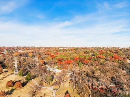 Aerial view suburb Dallas in fall season beautiful fall foliage, bright orange color. Residential houses covered by lush tree canopy colorful autumn leaves, park with trail, pathway and power line