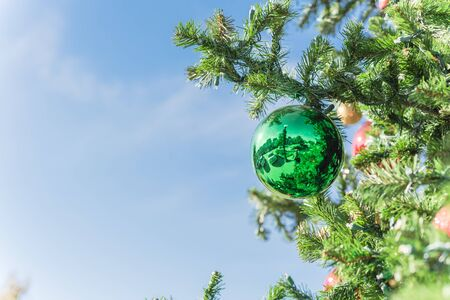 Lookup view of Christmas ball hanging on pine branches at daytime light and blue sky. Baubles and branch of spruce tree. Traditional artificial Xmas ornament at public park near Dallas, Texas Zdjęcie Seryjne