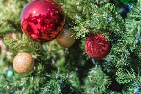 Shiny Christmas red ball hanging on pine branches at daytime light. Baubles and branch of spruce tree. Close-up traditional artificial Xmas tree ball ornament display at public park near Dallas, Texas