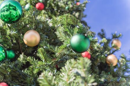 Lookup view of Christmas ball hanging on pine branches at daytime light and blue sky. Baubles and branch of spruce tree. Traditional artificial Xmas ornament at public park near Dallas, Texas Stockfoto