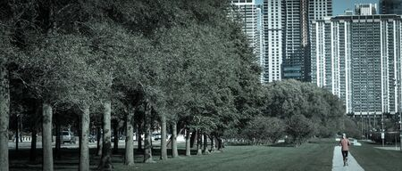 Beautiful park in downtown Chicago with fitness lady running. Back view of healthy woman in fall sportswear exercise at daytime