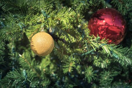 Vintage tone shiny Christmas red ball hanging on pine branches at daytime light. Baubles and branch of spruce tree. Traditional artificial Xmas tree with ball ornament at public park near Dallas, Texas Stockfoto