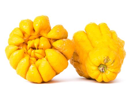 Two ripe Buddha hand fruits or Hand of Buddha, Fingered citron fruit, Citrus medica isolated on white background. Afragrant citron variety whose fruit is segmented into finger-like sections 版權商用圖片