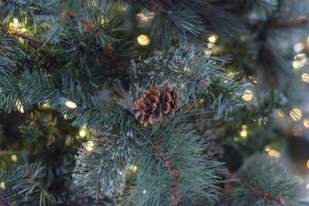 Green artificial Christmas tree with pine cones and microdot pre-lit lights. Xmas decoration supplies on display at home improvement store in Texas, America Zdjęcie Seryjne