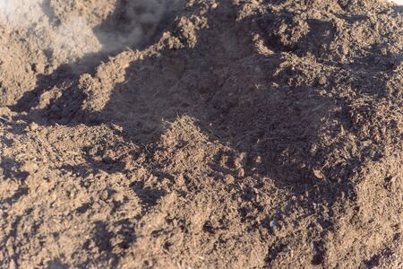 Compost close-up, textured fertile soil as background. Organic gardening season cultivated dirt, agriculture concept